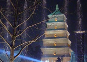 the night scene of the pagoda and the fountain